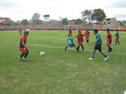 Cosmos y el Bosque disputarán la final infantíl de fútbol en los intercolegidos