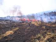 150 hectáreas afectadas por incendio en la vereda Chacua