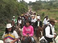 Más de 350 caballistas recorrieron el sector rural de Sibaté