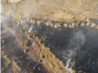 700 hectareas afectadas por incendio forestal entre Sibaté y Pasca