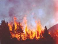 Más de 50 incendios forestales se han atendido en lo que va corrido del año en Soacha