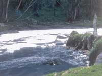 Sibaté,   promueve descontaminación de aguas