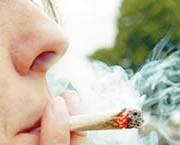 Se comienza a construir el  Plan de Reducción y Consumo de Sustancias Psicoactivas