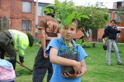 150 árboles sembrados por los 'Cuidapalos'