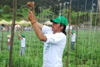 Expo Sibaté ya  encontró su  Hilo Dorado 2010