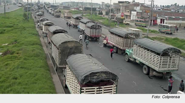 Invisibilizadas quedaron las peticiones del paro camionero