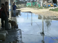 Prado Las vegas al acecho de las 'aguas negras'