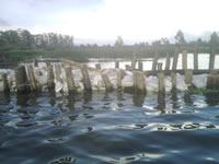 Concluyó cierre del jarillón sobre el río Balsillas