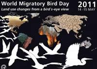 Día Mundial de Aves Migratorias