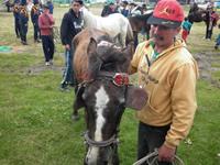 Soacha acelera el censo de equinos para frenar posible llegada de 'carreteros' de Bogotá