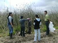 En Villa Luz se realizó otra jornada de limpieza al Humedal Tierra Blanca