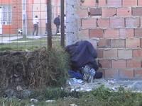 El refugio de los delincuentes de la comuna uno
