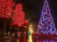 Con luces, música y show pirotécnico, mañana viernes se prende la Navidad en Bogotá