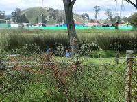 Humedal Neuta se convirtió en nido de inseguridad