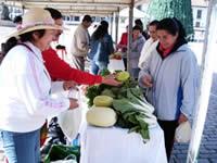 Incentivos para Asociaciones Agropecuarias de Zipaquirá
