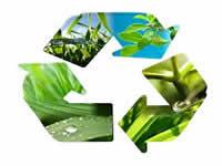 Estudiantes de colegios distritales reflexionan en torno al medio ambiente