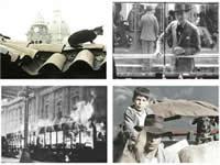 Llega «Cátedra Bogotá 2013, cine, ciudad y memoria»