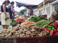 Soacha y Sibaté trabajan unidos por la seguridad alimentaria