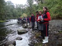 Colegios del Distrito realizan servicio social ambiental