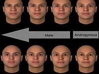 El éxito depende de la forma del rostro