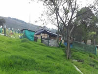 Fundación  Colombia Nuevos Horizontes creará granjas autosostenibles