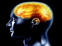 ¿Trabajar por más años protege el cerebro?