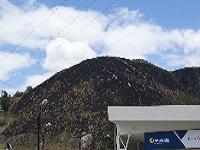 Incendio  destruyó montaña cercana a Maiporé