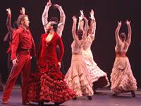 Flamenco, porristas y gimnasia en  el mes de Amor y Amistad