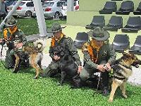 Escuadrón canino para proteger animales silvestres