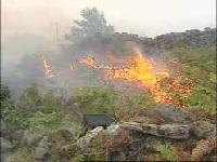 Incendio forestal en La Peña