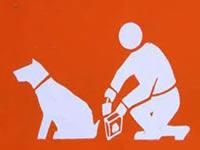 Implementarán tropezones caninos para recordar aseo de zonas verdes