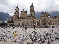 Gobierno nacional resalta cifras de seguridad de Bogotá
