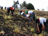 En Sibaté  finalizó el II  seminario para cultivadores de papa