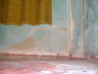 La humedad se está 'comiendo' las casas en Julio Rincón