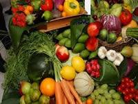 Madrid tendrá planta procesadora de frutas