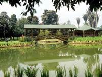 Distrito realiza IV Encuentro de Arte y Naturaleza