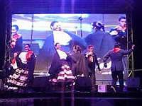 Fundación Artística y Cultural Tradición Colombiana realizará  gala final del año 2013