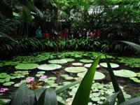 Jardín Botánico ingresa a la comunidad académica internacional