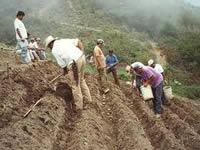 Alcaldes de Boyacá cuestionan Ministerio de agricultura