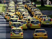 Distrito formará a 5.000 taxistas en turismo