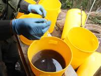 Policía desmantela laboratorio para la producción de cocaína