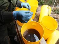 Desmantelan laboratorio productor de coca