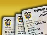 Sustitución de licencias de conducción es gratuita: Consejo de Estado