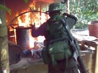 Destruyen laboratorio de narcóticos en Chocontá
