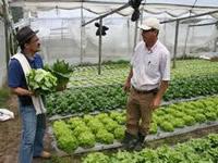 Continuará programa de asistencia técnica en Cundinamarca