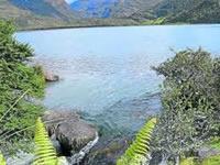 Departamento compra nuevos predios para preservación hídrica