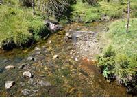 Departamento adquiere más predios para conservación hídrica