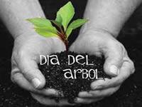 Cundinamarca celebró el día del árbol
