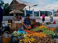Feria de mercados campesinos en el sur de Bogotá