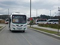 Nueva ruta circular para los habitantes de Ciudad Verde